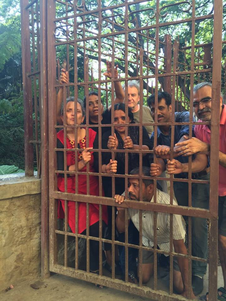 Artists in a Cage